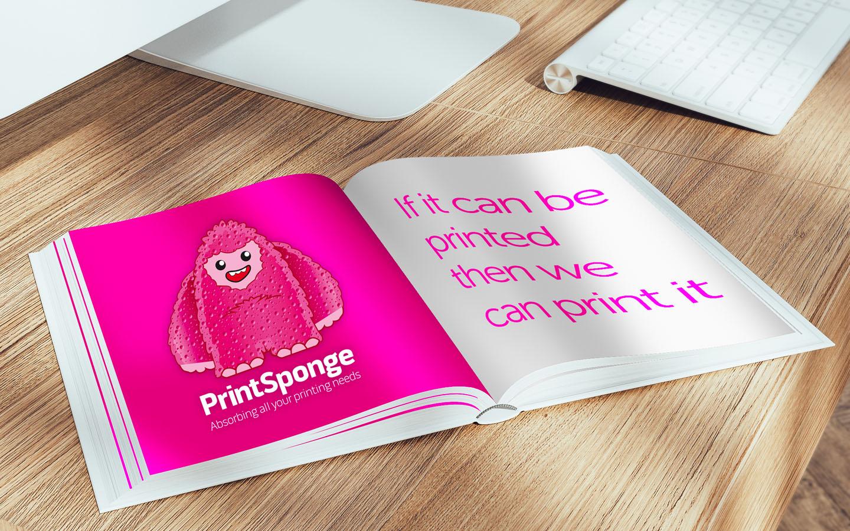 printsponge big image 2